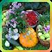 Download Дача и огород 2.1 APK