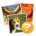 Download 4 Pics 1 Word: More Words 1.0.3 APK