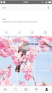 screenshot of 9Cut For Instagram version 1.0.0