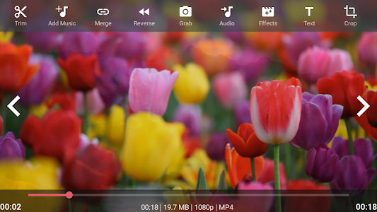 Download AndroVid - Video Editor 2.9.5.2 APK