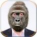 Download Animal Face Changer 1.4 APK