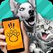 Download Animal Translator. Simulator 1.1 APK