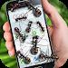 Download Ants on screen funny joke 3.4 APK
