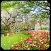 Download Beautiful Garden Wallpaper 1.0 APK