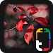 Download Beautiful Nature Theme 1.0.0 APK
