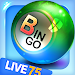 Download Bingo City Live 75+Vegas slots 12.01 APK