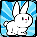 Download Bunny Rabbit Evolution ? 35.0.0 APK