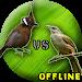 Download Cililin Dan Kapas Tembak MP3 1.0.3 APK