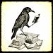 Download Divination - Wisdom oracle 1.2.5 APK