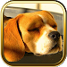 Download Free Beagle Puzzle Games 3.1.6 APK