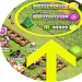 Download Gem Cheats for Clash of Clans 1.0 APK