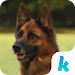 Download Keyboard - I Love Dogs New Theme 7 APK