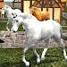 Download Life of Horse - Wild Simulator 1.12 APK