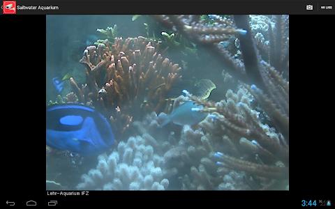 Download Live Camera Viewer ★ World Webcam & IP Cam Streams 1.9 APK