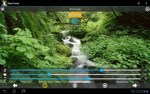 Download Relax Forest ~ Nature Sounds  APK