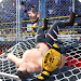 Download Wrestling Cage Revolution : Wrestling Games  APK