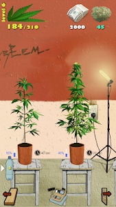 screenshot of Weed Firm: RePlanted version 1.7.5