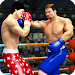 Download World Tag Team Super Punch Boxing Star Champion 3D 1.7 APK