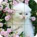 Download Puzzle - kittens 1.21 APK